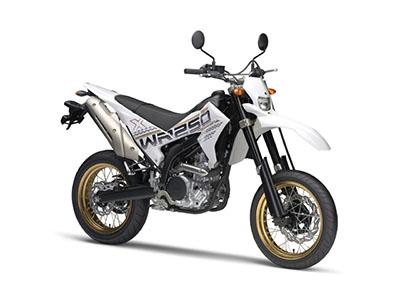 WR250X画像